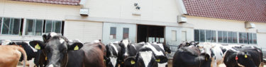 石川県能美市 辰口放牧場|全国牧場ガイド USHICAMERA